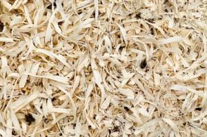 wood-2309314__340